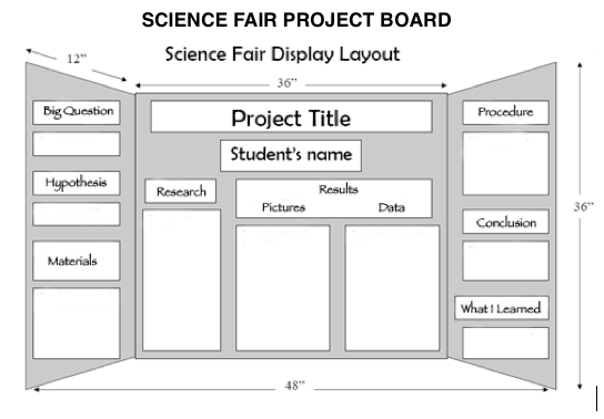 science project poster board examples